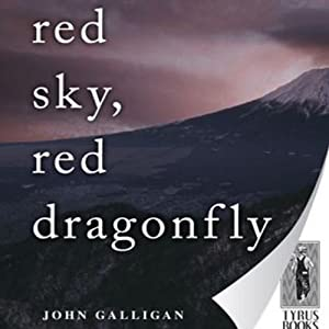 Red Sky, Red Dragonfly | [John Galligan]