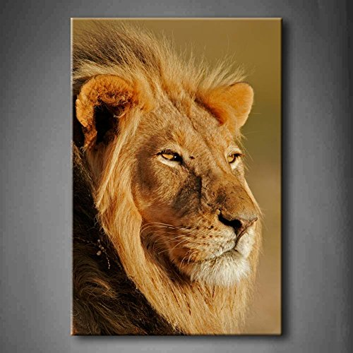 Big Male Lion Front Of The Eye Wall Art Painting Pictures Print On Canvas Animal The Picture For Home Modern Decoration (Stretched By Wooden Frame,Ready To Hang)