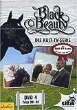 Black Beauty, Teil 04 title=