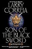 Son of the Black Sword (Saga of the Forgotten Warrior Book 1)