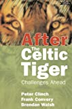 img - for After the Celtic Tiger: Challenges Ahead book / textbook / text book