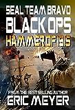 SEAL Team Bravo: Black Ops - Hammer of ISIS