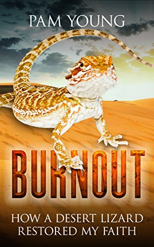 burnout-how-a-desert-lizard-restored-my-faith-burnout-to-bliss-book-1-english-edition