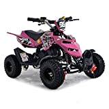 FunBikes Kids Mini Quad Bike 49cc 50cc Petrol Quad - Ride On ATV Midi (Pink)