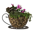 Coffee Cup Scroll Planter