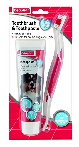 Artikelbild: Beaphar Toothbrush & Toothpaste for Dogs