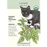 Catnip Certified Organic Seeds 450 Seeds