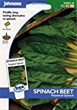 Johnsons Seeds - Pictorial Pack - Vegetable - Spinach Beet Perpetual Spinach - 250 Seeds