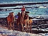 Inside Tracks: Robyn Davidsons Solo Journey Across the Outback