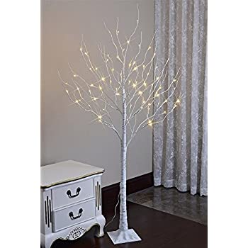 Lighted Birch Tree