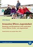 Innovative Offene Jugendarbeit: Bausteine und Perspektiven einer sozialräumlichen Offenen Kinder- und Jugendarbeit (Soziale Arbeit und Sozialer Raum)
