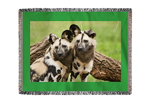 African Wild Dogs (60x80 Woven Chenille Yarn Blanket)