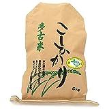 多古米 コシヒカリ 市場に出回りにくい 美味しい お米 農家直送 高級米 磨き 精米 (5kg)