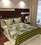 Home Candy Elegant Cotton Double Bedsheet with 2 Pillow Covers - Green (CTN-BST-335)