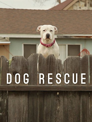 Dog Rescue on Amazon Prime Instant Video UK