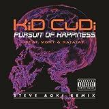 Pursuit Of Happiness (Steve Aoki Remix Feat. MGMT & Ratatat) [Explicit]