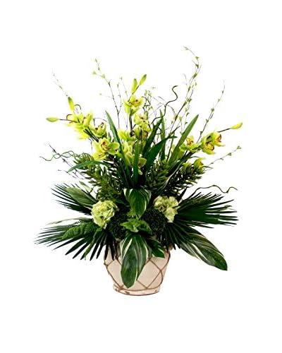Creative Displays Tropical Cymbidium Orchid & Hydrangea in Ceramic Pot, Green