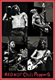 Red Hot Chili Peppers Poster and Frame (Plastic) - Live, 2003 (36 x 24 inches)
