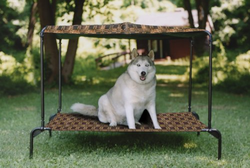 Waterproof Outdoor Dog Beds For Large Dogs