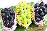 果物 ギフト シャインマスカット & ナガノパープル & 種無し ピオーネ 究極の贅沢 ぶどう セット シリーズ