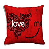 meSleep Love 3D Cushion Cover (16x16)