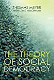 The Theory of Social Democracy