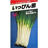 いっぴん葱(ウエキ交配)数量:10ml