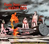 Castles Wings Stories & Dreams by PAOLO SIANI & Friends feat. NUOVA IDEA (2011-01-18)