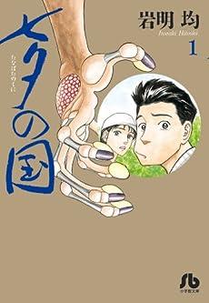 七夕の国 1 (小学館文庫)