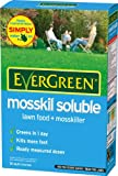EverGreen Mosskil Soluble Lawn Food & Moss Killer