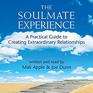 The Soulmate Experience Hörbuch
