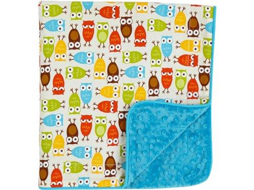 Minky Baby Blanket - Owl Baby Shower - Stroller Blanket -receiving blankets - 1