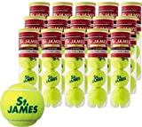DUNLOP(ダンロップ) プレッシャーライズド St.JAMES(セントジェームス)(15缶/60球)テニスボール