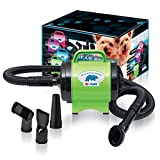 B-Air BPD-1 Bear Power Green Power Pet Dryer Perfect High Velocity Dryer for Dogs Cats Great Pet Dryer Grooming Dog Hair Dryers with Four Interchangeable Nozzles Insulated for Quite Operation