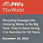 Recycling Sewage Into Drinking Water Is No Big Deal. They've Been Doing It in Namibia for 50 Years. | Daniel A. Gross