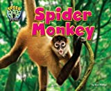 img - for Spider Monkey (Treed: Animal Life in the Trees) book / textbook / text book
