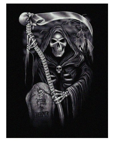 Wild Star 'Fear The Reaper' Fleece Blanket / Throw 120cmx160cm by Wild Star@Home