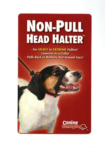 11200 Canine Concepts Medium 25-60 Lbs Non-pull Dog Head Halter