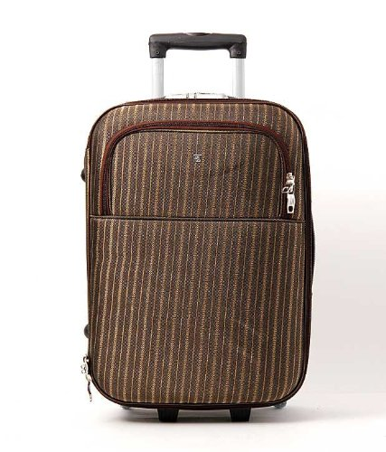 Camel RL Camel Brown Designer Travel Bag T 24-BR (Multicolor)