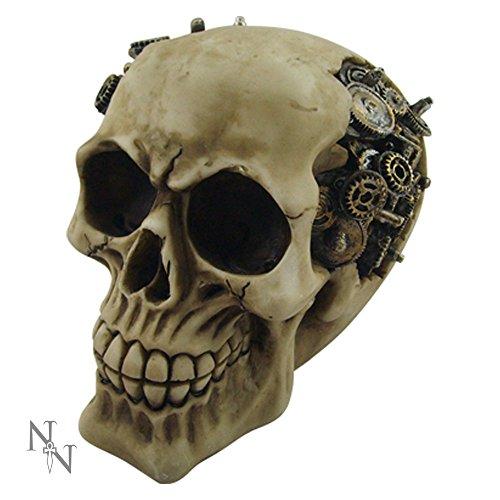 Nemesis Now-Steampunk: cranio teschio statuetta