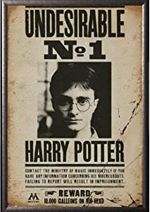 Amazon.com: Framed Harry Potter - Undesirable No 1 24x36 ...