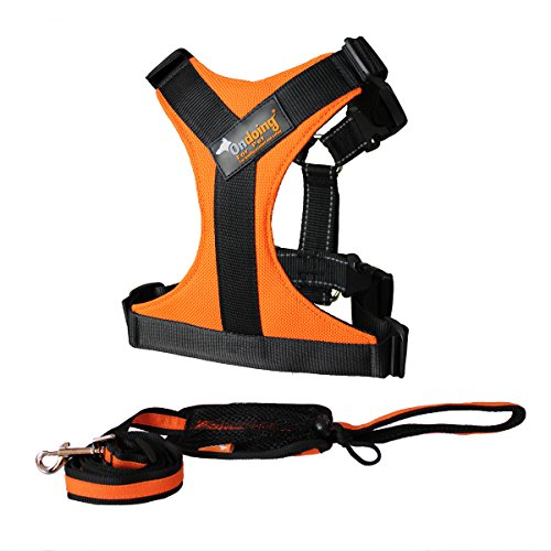 Dog Harness Large Front Range Harness for Pit Bull, Boxer, Bull Terrier, 2 Pieces Orange,Large (Dog Harness Pit Bull compare prices)