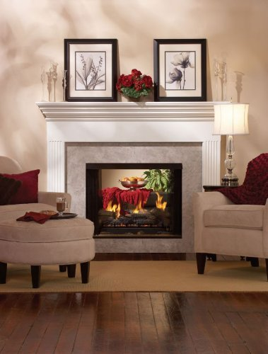 Premium 36 DV See-Through Fireplace DVP36SP32EN - Natural Gas (Gas Fireplace Empire compare prices)