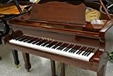 Schimmel Vogel Grand Piano - 6 Length - African Mahogany Polish