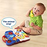 VTech-Sit-to-Stand-Learning-Walker-Blue-Online-Exclusive