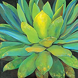 Portfolio Canvas Decor Large Printed Canvas Wall Art Painting, 35 by 35-Inch, Agave, Framed and Stretched Ready to Hang