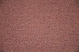 Dean Pet Friendly Non-Skid 2\' x 3\' Carpet Accent Rug/Anti-Fatigue Mat: Copper