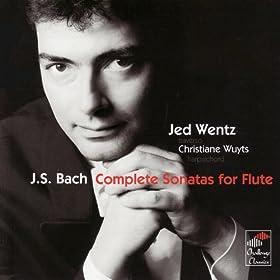 Sonata in C major VWC 1033: Menuet I-II