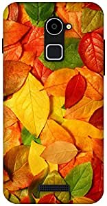 The Racoon Grip fallen leaves hard plastic printed back case / cover for Coolpad Note 3 Lite