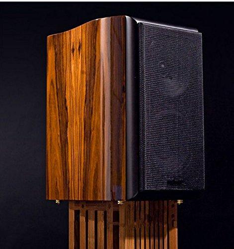 Gowe-Bcherregal-Lautsprecher-Speziell-fr-digitale-oder-Tube-Verstrker